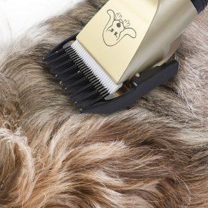 ערכת טיפוח מכונת תספורת מעולה לכלב וחתול