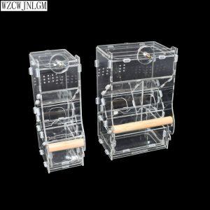 מתקן האכלה לתוכים עם תא לקליפות-פתרון מעולה ללכלוך