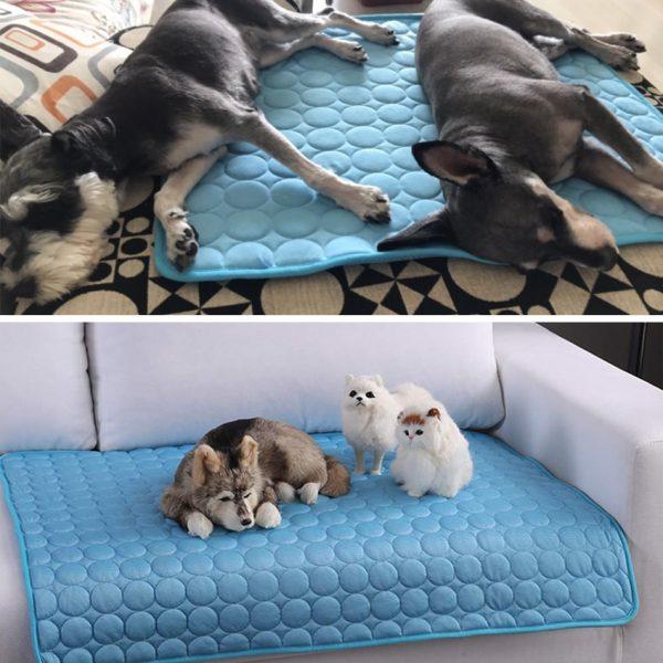 מחצלת לקיץ כלבים חתולים