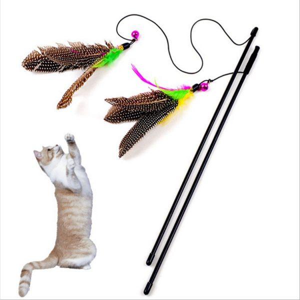 משחקים שונים לחתולים