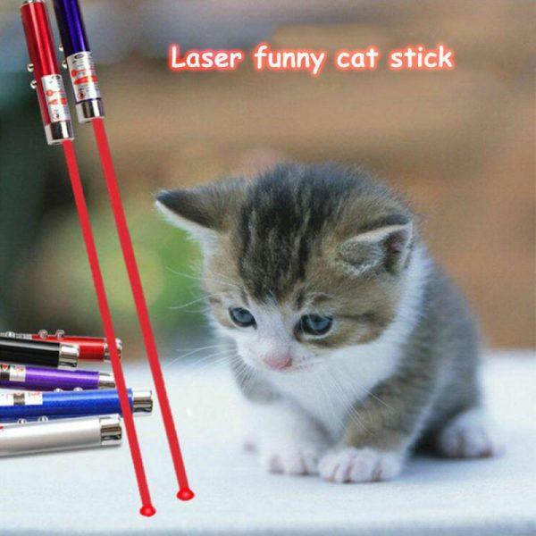 משחק לייזר חתולים