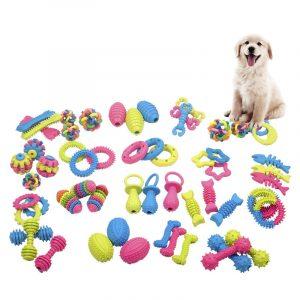 משחקים שונים לכלבים ובריאות השיניים